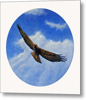 Spirit In The Wind Metal Print by Brian  Commerford