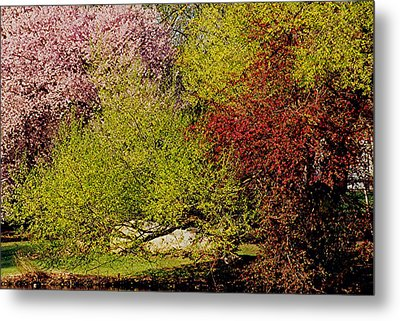 Spring Colors Metal Print by Juergen Roth