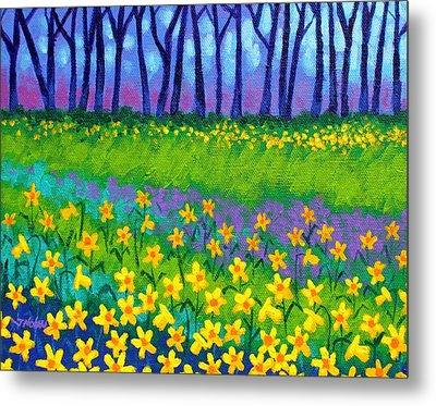Spring Daffodils Metal Print by John  Nolan
