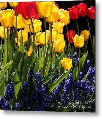 Spring Flowers Square Metal Print by Carol Groenen