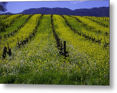 Spring Mustard Field Metal Print by Garry Gay