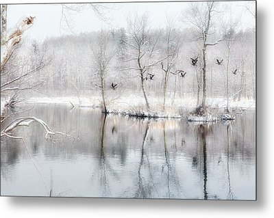 Spring Snow Metal Print by Bill Wakeley