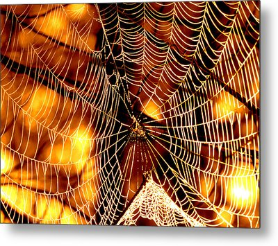 Spun Gold Metal Print by Dianne Cowen