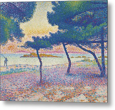 St. Clair Beach Metal Print by Henri-Edmond Cross