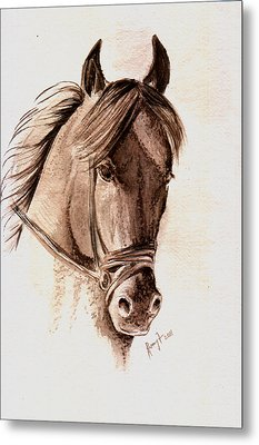 Steely Black Stallion Metal Print by Remy Francis