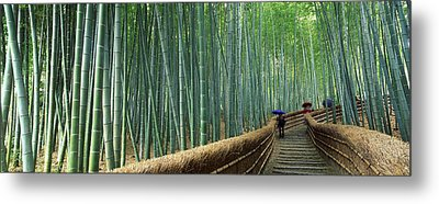 Stepped Walkway Passing Metal Print by Panoramic Images