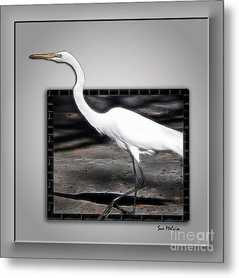 Stepping Out Into A New Dimension Metal Print by Sue Melvin