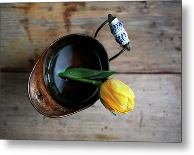 Still Life With Tulip Metal Print by Nailia Schwarz