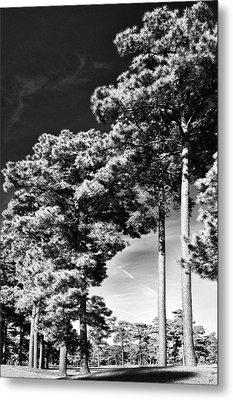 Stillness Metal Print by Gerlinde Keating - Galleria GK Keating Associates Inc