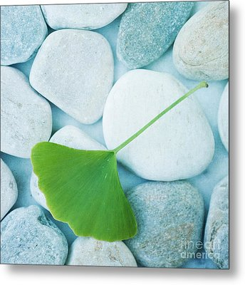 Stones And A Gingko Leaf Metal Print by Priska Wettstein