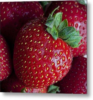 Strawberry 3 Metal Print by Robert Ullmann