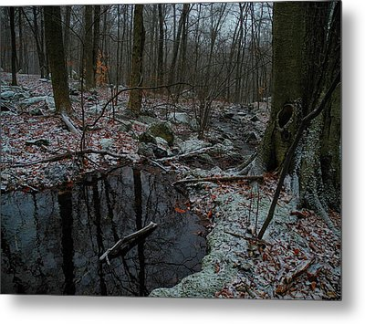 Stream Comes Down Along The At In Ny Metal Print by Raymond Salani III