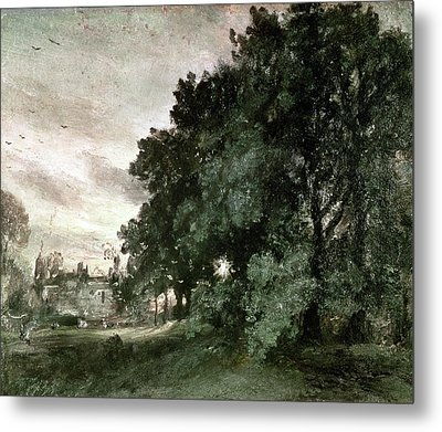 Study Of Trees Metal Print by John Constable