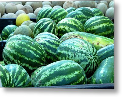 Summer Melons Metal Print by Teri Virbickis