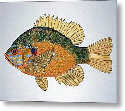 Sunfish South Usa Metal Print by Don Seago