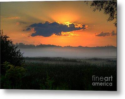 Sunrise In The Swamp-3 Metal Print by Robert Pearson