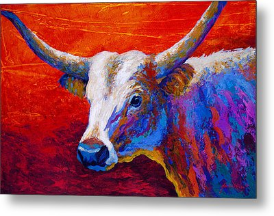 Sunset Ablaze Metal Print by Marion Rose