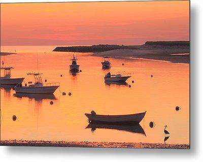 Sunset And Great Blue Heron Pamet Harbor Cape Cod Metal Print by John Burk