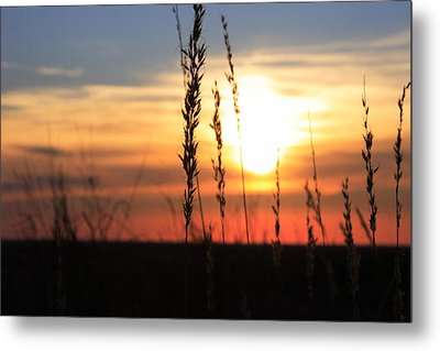 Sunset At Monument Hill Metal Print by Toni Hopper