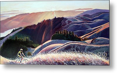 Sunset Bike Ride Metal Print by Colleen Proppe