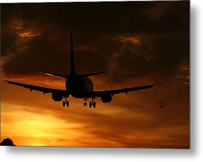 Sunset Flight Metal Print by Mountain Dreams