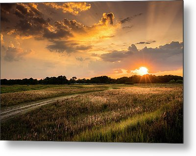 Sunset Meadow Metal Print by Marvin Spates