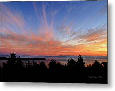 Sunset Over Cypress Metal Print by Tom Buchanan