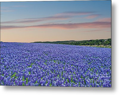 Sunset Over Sea Of Blue Metal Print by Tod and Cynthia Grubbs