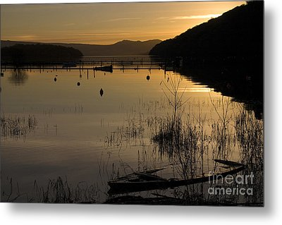 Sunset Over The Lake Metal Print by Carole Lloyd