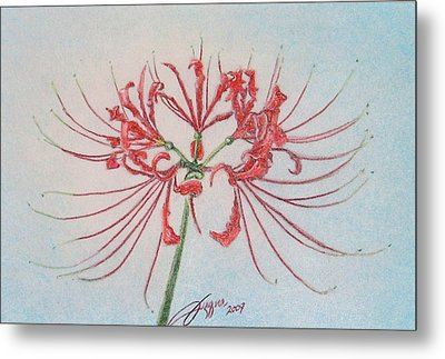 Surprise Lily Metal Print by Beverly Fuqua