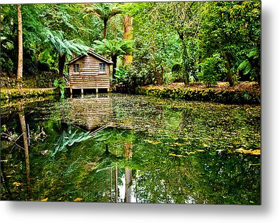 Surrounded By Nature Metal Print by Az Jackson