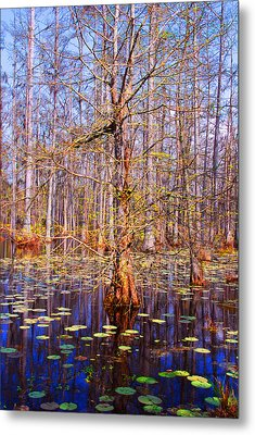 Swamp Tree Metal Print by Susanne Van Hulst