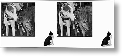 Sworn Enemies - Gently Cross Your Eyes And Focus On The Middle Image Metal Print by Brian Wallace