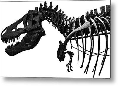 T-rex Metal Print by Martin Newman