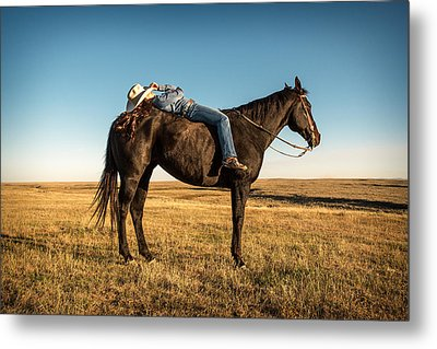 Taking A Snooze Metal Print by Todd Klassy