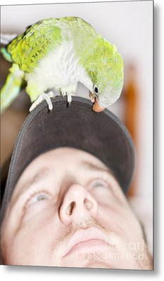 Talking To The Animals Metal Print by Jorgo Photography - Wall Art Gallery