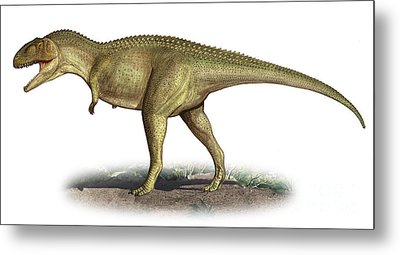 Tarascosaurus Salluvicus, A Prehistoric Metal Print by Sergey Krasovskiy