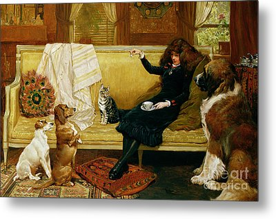 Teatime Treat Metal Print by John Charlton