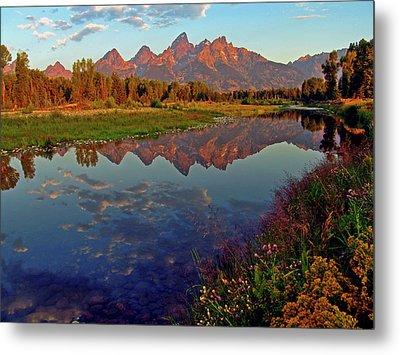 Teton Wildflowers Metal Print by Scott Mahon