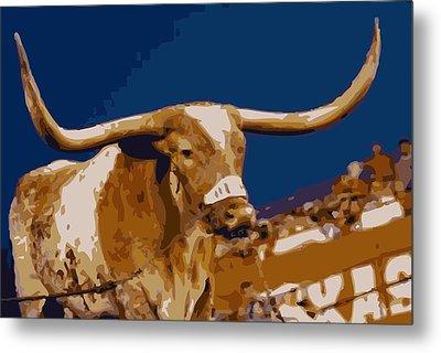Texas Bevo Color 16 Metal Print by Scott Kelley