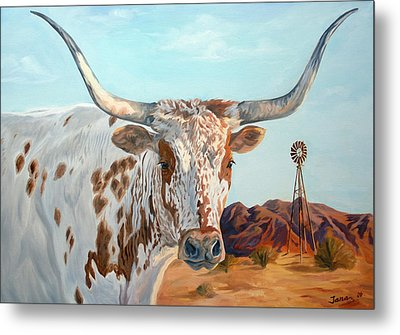 Texas Longhorn Metal Print by Jana Goode