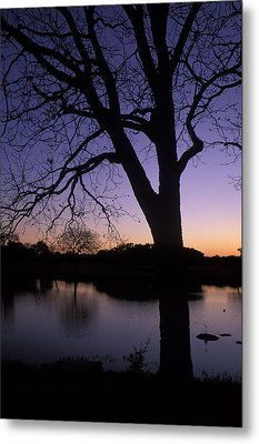 Texas Sunset On The Lake Metal Print by Kathy Yates