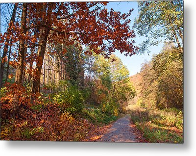 The Beauty Of Autumn Time Metal Print by Jenny Rainbow
