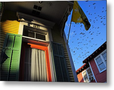 The Birds Metal Print by Skip Hunt