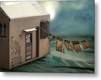 The Box That Was A House Metal Print by Maggie Terlecki