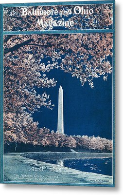 The Cherry Blossoms Metal Print by Rideout