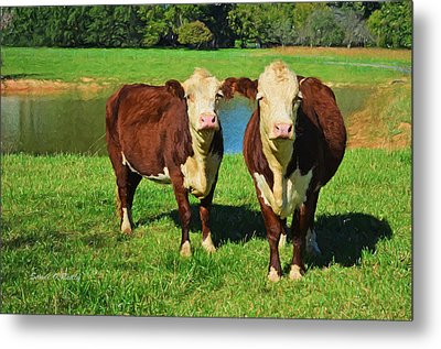 The Cow Girls Metal Print by Sandi OReilly