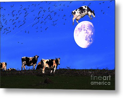 The Cow Jumped Over The Moon Metal Print by Wingsdomain Art and Photography