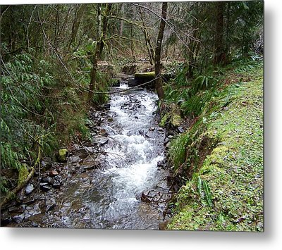 The Creek Metal Print by Laurie Kidd