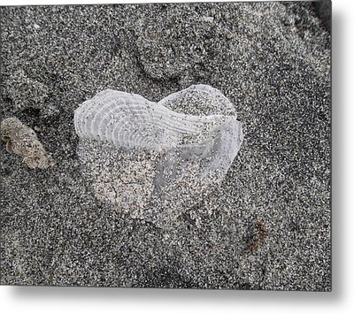 The Delicate Heart Metal Print by Patricia Lyons